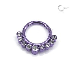 Segmentring Clicker purple...